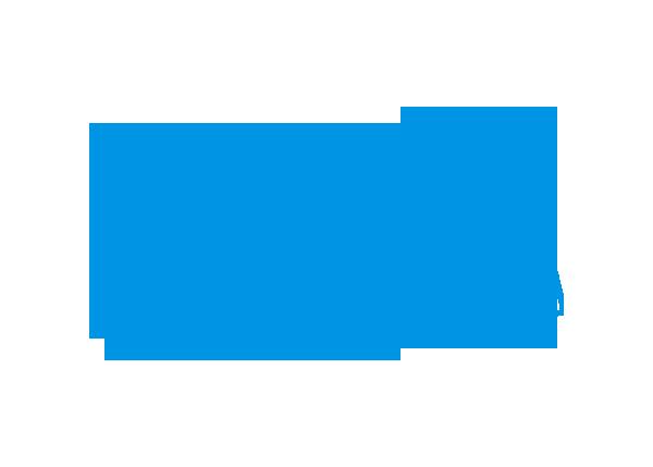 Magdeburger Wirtschaftsinformatik AG